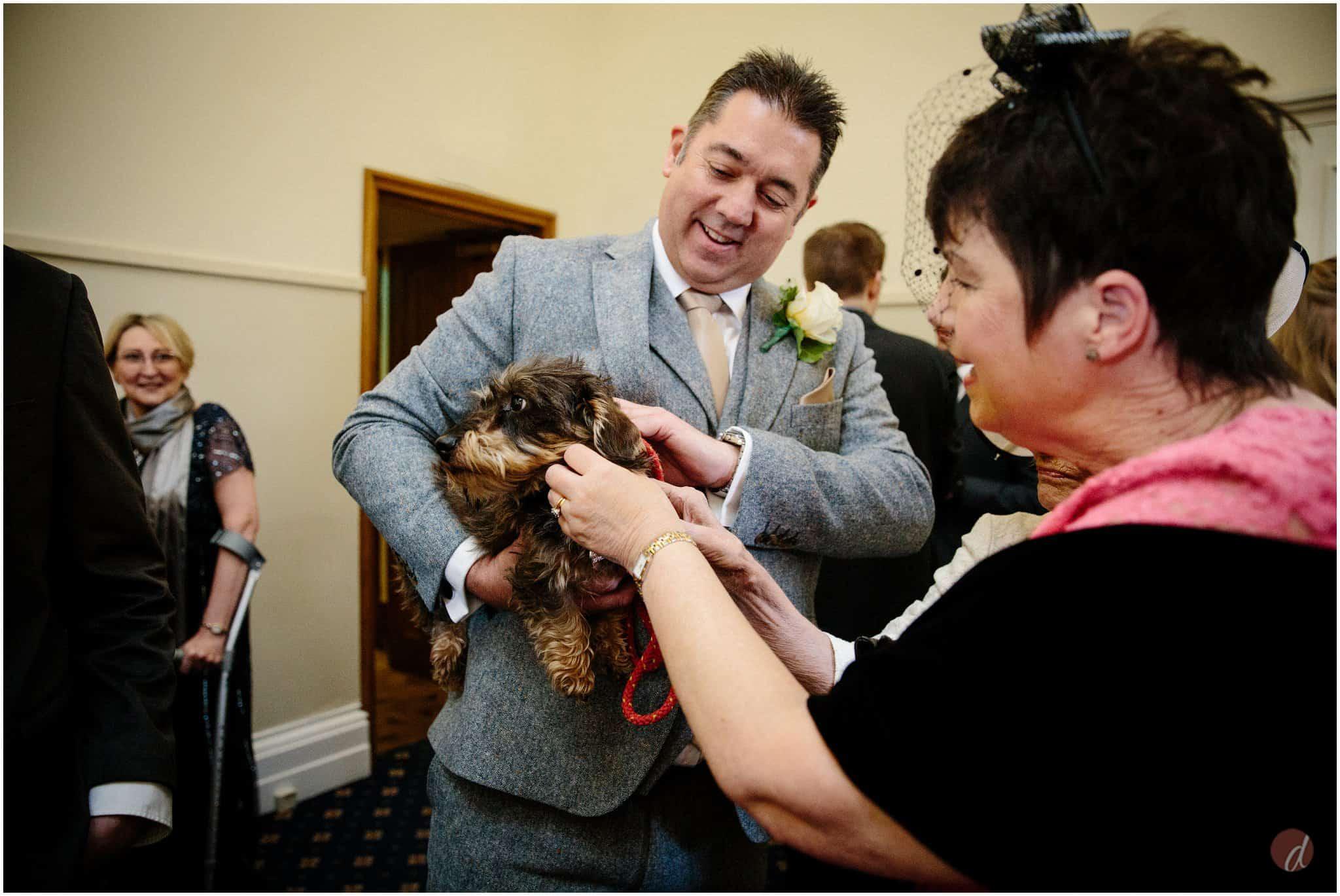 doggy wedding guest
